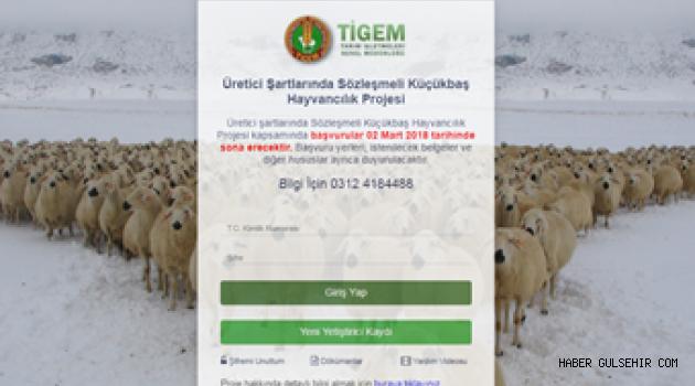 300 Koyun Projesi Son Müracaatları 02 Mart 2018