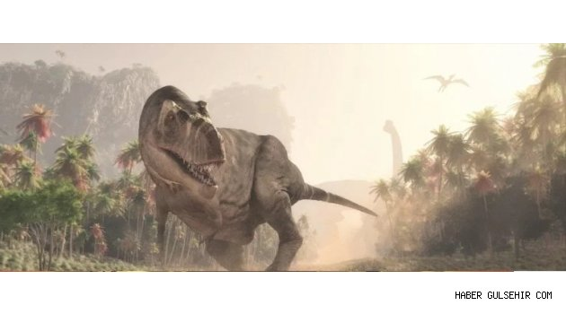 Dinozorlar Ne Yiyordu?