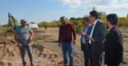 Başkan Çiftçi, DSİ İle Sadabad Parkı Ve Kızılırmak'a El Attı