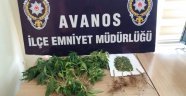 Avanos'ta Hint Keneviri Ele Geçirildi
