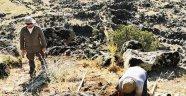 'Mokisos Antik Kenti 2020' Arkeolojik Çalışmaları Başladı