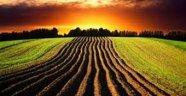 Tarım Arazilerinde Satış ve Miras Yoluyla Mülkiyet Devri