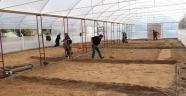 Uçhisar Belediyesi Serada Üretime Başladı
